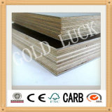 Qingdao Gold Luck High Quality Film Faced Plywood Used Formwork