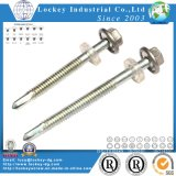 Hex Washer Head Roofing Screw Roof Screw Drilling Screw