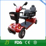 800W Double Seats Four Wheels Electric with Pg Controller