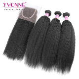 Brazilian Kinky Straight Hair Bundles with Lace Closure