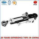 Customized Cane Loader Double Action Hydraulic Cylinder