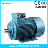 Ye2 High Efficiency Three-Phase Induction Motor of Frame 71-355 and Multi-Pole Changeable