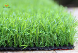 Artificial Grass for Back Yard with RoHS Certification