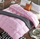 Adult Quilts Soild Colour 90/10 Down Feather Quilt for Home