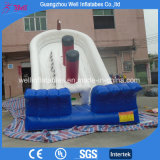 Good Quality Titanic Inflatable Slide for Children Amusement Park