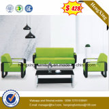 Living Room Genuine Leather Sofa (HX-CS039)