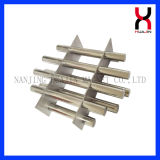Magnetic Filter, Rare Earth Sintered Magnet for Food Industry