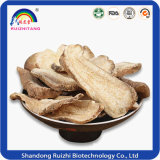 Chinese Traditional Planted Atractylodes Lancea Extract Plant Extract