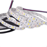 New Style 5050 RGBW LED Strip Light