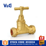 Stop Valve Water Pipe Stop Valve (VG-C20102)