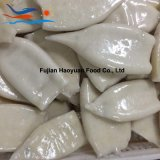 Best Quality Frozen Fish Red Oceanic Squid