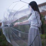 Most Popular Auto Open Fashion Dome Shape Bubble Transparent Umbrella
