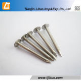 Big Head Electric Galvanized Clout Nails
