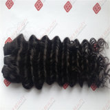 Double Drawn Human Hair Weft with Top Quality