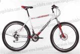 Fashion Alloy Frame MTB City Bike MTB City Bicycle for Dirt Road (HC-TSL-MTB-66402)