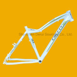 Bike Frame, Bicycle Frame for Sale Tim-FM912