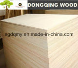 Poplar Bleached Furniture Plywood with Best Quality