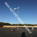 1000W Wind Turbine for The Generation of Electricity by Wind