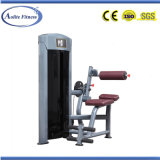 China Gym Equipment Back Extension