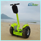 High Performance Dual Battery System Electric Scooter with Ce