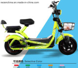 Two Wheel 500W Electric Vehicle Electric Motorcycle in China