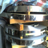Expert Manufacturer Stainless Steel Strips (AISI316L)