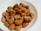 Canned Broad Beans with High Quality
