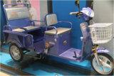 Electric Trike (AG-ETP06)