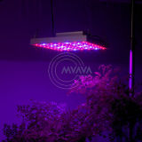 2011 New LED Grow Light (MA-1530-28W)