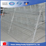 Hot Sell a Type Automatic Chicken Cage System