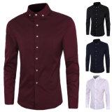 Wholesale Custom Fashionbusiness Office Dress Shirt (A421)