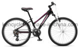 Hot Selling Mountain Bike/MTB Bike/Mountain Bike Bicycles/MTB Bicycles
