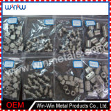 Machined Parts Stainless Pipe Fitting Bolt and Nut (WW-MP017)