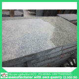 Low Price High Quality Granite /Stone /Tile/Slab