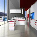 2016 Welbom Modern Lacquer Kitchen Furniture