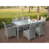 Garden Furniture Dining Set (DS-06042)