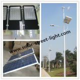 New Design 50W Wind and Solar Hybrid Street Light