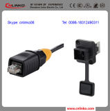 RJ45 IP65 Female 8p8c RJ45 Cable Connector From China Manufacturer