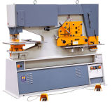 Q35y Series Hydraulic Combined Punch and Cutting Machine