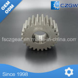 High Precision Customized Transmission Gear Spur Gear for Various Machinery
