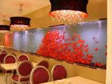 Chinese Large Marine Acrylic Aquarium