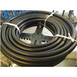 Fuel Dispensing Hose Assembly in 3/4 Inch X 15 Feet Long