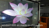 Transparent Hologram Foil / Self Adhesive Holographic Film
