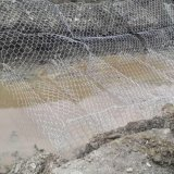 Competitive Price Welded Galvanized Gabion Wire Mesh