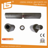 High Quality Iron Weld Door Hinge (W-10420-1BB)