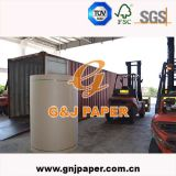 Best Quality Brown Kraft Liner Paper in Roll Packing