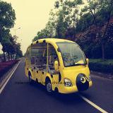 Cartoon Shape Cute Electric Sightseeing Car Rsg-118y