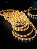 Ce EMC LVD RoHS Two Years Warranty, Waterproof Flexible LED Strip Light
