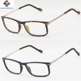 High Quality New Design Tr90 Eyeglass, Eyewear Optical Glasses Frame