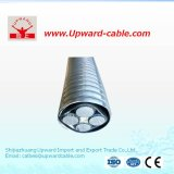 XLPE Insulation PVC Sheathed Power Cable (YJV YJLV)